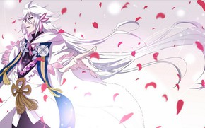 Picture anime, petals, art, MAG, Merlin, Fate Grand order