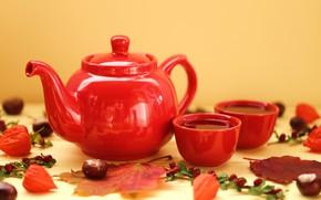 Picture autumn, leaves, mood, tea