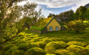 Picture greens, the sky, grass, the sun, clouds, trees, house, Iceland, Iceland