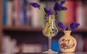 Picture glass, water, flowers, glass, books, bouquet, spring, purple, vase, still life, a bunch, blurred background, …
