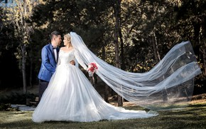 Picture pose, holiday, dress, lovers, the bride, veil, wedding, the groom