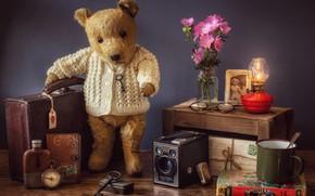Wallpaper flowers, style, lamp, key, bear, glasses, mug, book, bear, suitcase, compass, vintage, Teddy bear, letters