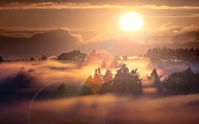 Picture New Zealand, Waikato, Whatawhata, Foggy Sunrise