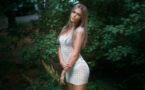 Wallpaper dress, Carina Carina, Alexander Drobkov-Light, look, pose, hands, portrait