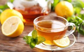 Picture lemon, tea, Cup, mint