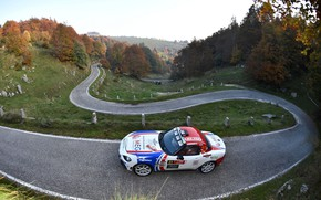 Picture rally, 2018, Abarth, winding road, 124 Rally