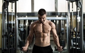 Picture look, pose, fitness, muscle, muscle, press, athlete, simulators, biceps, gym, fitness, gym, bodybuilder, training, abs, …