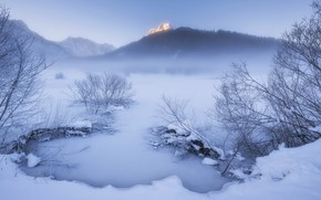 Picture winter, snow, fog
