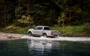 Picture vegetation, Renault, pickup, 4x4, Ford, 2017, Alaskan, gray-silver, departure to the shore