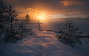 Picture winter, snow, trees, fog, sunrise, dawn, morning, frost, Norway, Norway, RINGERIKE, Ringerike, frozen lake