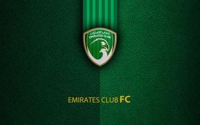 Picture wallpaper, sport, logo, football, Emirates Club