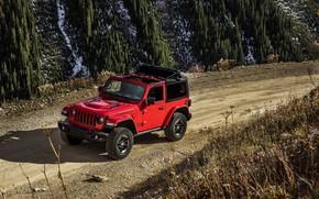 Picture red, movement, primer, 2018, Jeep, Wrangler Rubicon
