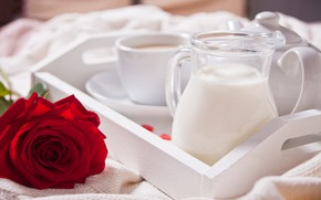 Picture romance, rose, coffee in bed