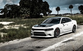 Picture Dodge, Dodge, Charger, Dodge Charger, Dodge Charger
