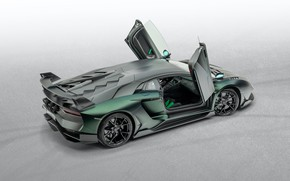 Picture Lamborghini, door, supercar, Aventador, Mansory, 2020, SVJ, Cabrera
