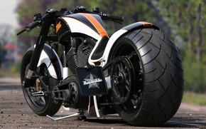 Picture Harley-Davidson, Tuning, Motorbike, Custom bike