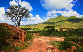 Picture road, sand, forest, the sky, clouds, trees, tree, hills, Africa, Africa, Kenya, Kenya