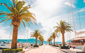 Picture sea, the sun, mountains, palm trees, yachts, Montenegro, Tivat