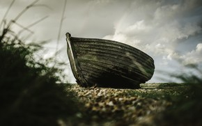 Picture grass, shore, boat, wooden