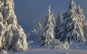 Picture winter, snow, trees, landscape, nature, ate, temple, Belogorye, Perm Krai, Maxim Evdokimov, Белая Гора