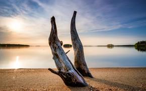 Picture sunset, lake, Koitere, Unit converter