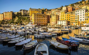 Picture home, boats, port, Italy, Liguria, Camogli
