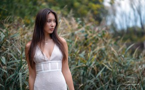 Picture grass, trees, pose, model, portrait, makeup, figure, dress, hairstyle, brown hair, Asian, beauty, in white, …