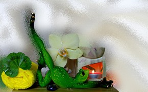 Picture flower, relax, frog, figurine, still life, candle, Orchid, the Wallpapers, aromatherapy, author's photo by Elena …