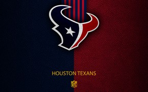 Picture wallpaper, sport, logo, NFL, Houston Texans