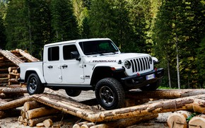 Picture white, trees, SUV, pickup, Gladiator, logs, 4x4, Jeep, Rubicon, 2019