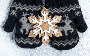 Picture photo, Snowflakes, New year, Mittens