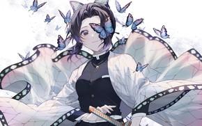 Picture girl, butterfly, sword, The Blade Cleaves Demons, Shinobu Kochou
