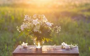 Picture flowers, nature, table, background, bouquet, vase