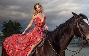 Picture girl, horse, makeup, dress, blonde, Laura Vandervoort