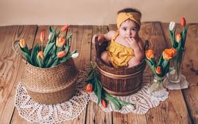 Picture flowers, Board, girl, tulips, baby, child, swipe