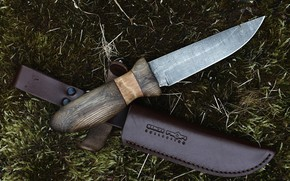 Picture background, moss, knife
