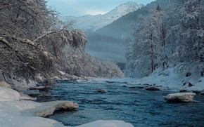 Picture winter, forest, snow, trees, mountains, river, Switzerland, Alps