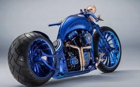 Picture Blue, Bike, Custom, Harley-Davidson Blue Edition