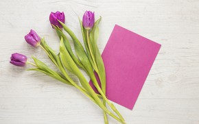 Picture bouquet, tulips, pink, wood