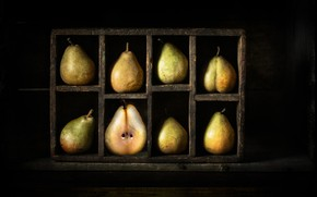 Picture fruit, pear, eight