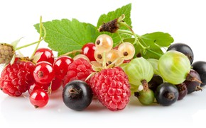 Picture berries, raspberry, currants, gooseberry