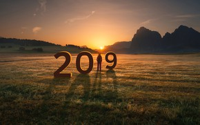 Picture field, the sun, New year, 2019