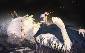 Picture flower, girl, night, butterfly, iris, Fate / Grand Order, The destiny of a great campaign