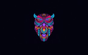 Picture Color, Minimalism, Owl, Bird, Style, Background, Art, Art, Style, Background, Minimalism