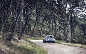 Picture road, trees, transport, car, Alpine A110S