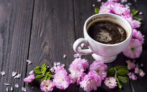 Picture flowers, pink, wood, pink, blossom, flowers, coffee cup, a Cup of coffee