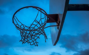 Wallpaper ring, shield, basketball