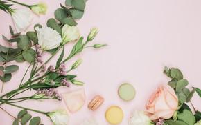 Picture background, pink, bouquet, composition, eustoma, macaron, limonium