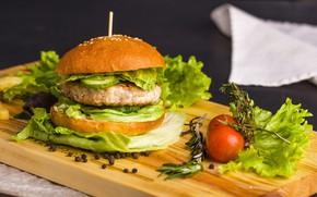 Picture tomatoes, hamburger, Patty, bun, salad