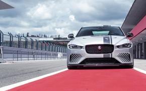 Picture Jaguar, front view, 2018, XE SV, Project 8